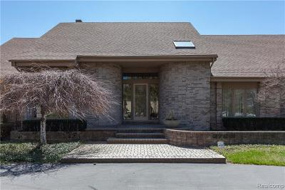 Bloomfield Hills Single Family Home For Sale: 3726 Durham Crt