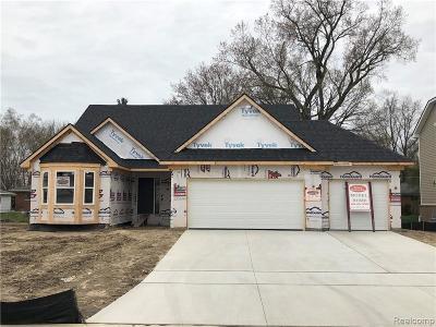 Macomb Single Family Home For Sale: 23206 Merlene Drive Dr