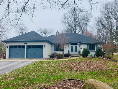 Lake Orion Single Family Home For Sale: 3135 Stanton Rd
