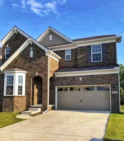 Northville Single Family Home For Sale: 19027 Denali Cir