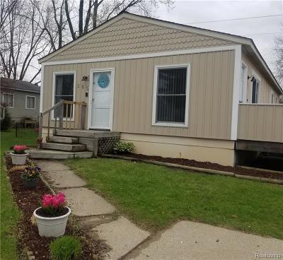 Auburn Hills Single Family Home For Sale: 385 Alberta St