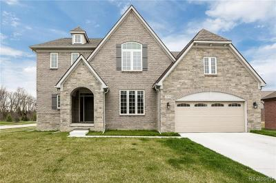 Rochester Hills Single Family Home For Sale: 3856 Somerset Cir