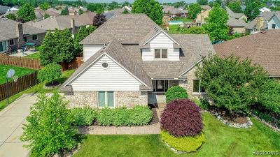Fraser Single Family Home For Sale: 34487 Hidden Pine Dr