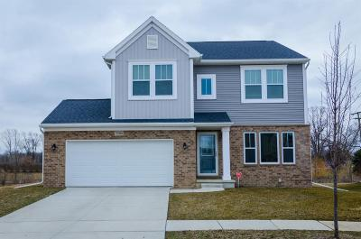 Belleville Single Family Home For Sale: 7190 Chandler Dr