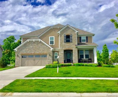 Lake Orion Single Family Home For Sale: 366 Findley Cir