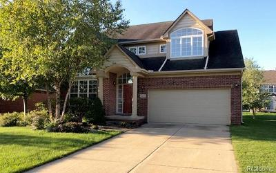 Northville Single Family Home For Sale: 16227 Westminister Dr