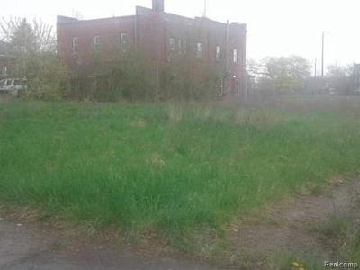 Detroit Residential Lots & Land For Sale: 1689 W Grand Blvd