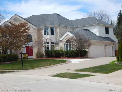 Troy Single Family Home For Sale: 458 Belle Meade Rd