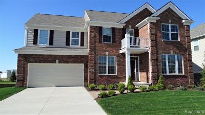 Macomb Single Family Home For Sale: 49299 Cranbrook Dr