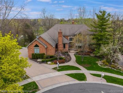 Rochester Single Family Home For Sale: 1458 Stony Creek Dr
