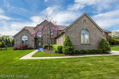 Washington Single Family Home For Sale: 13532 Scenic Hollow Dr