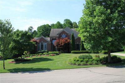 Farmington Hills Single Family Home For Sale: 32487 Oakwood