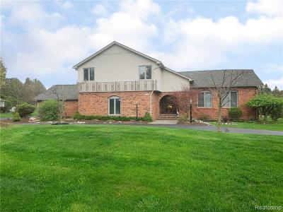 Rochester Hills Single Family Home For Sale: 2602 New England Dr