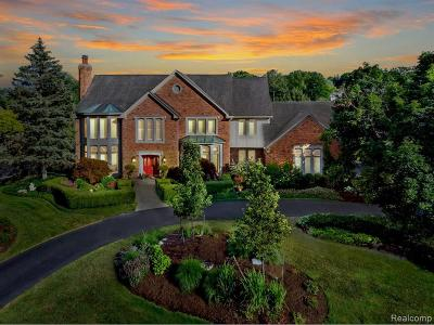 Bloomfield Hills Single Family Home For Sale: 1249 Water Cliff Dr