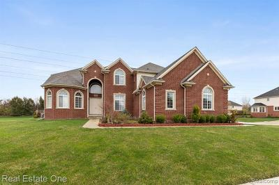 Shelby Twp Single Family Home For Sale: 54556 Pelican Ln