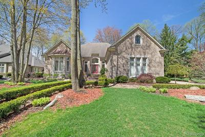 Shelby Twp Single Family Home For Sale: 53707 Hunters Crossing Dr