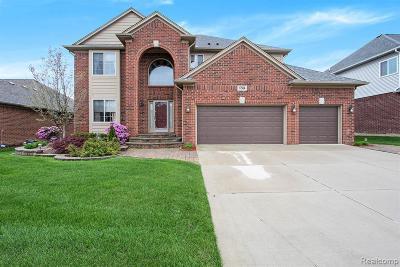Clinton Township Single Family Home For Sale: 17504 Merganser Dr