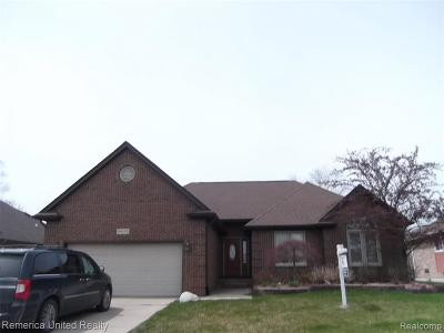 Macomb Single Family Home For Sale: 54195 Verona Park Dr