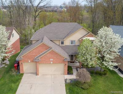 Macomb Single Family Home For Sale: 16117 White Water Dr