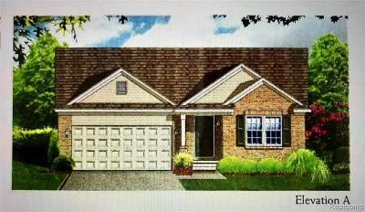 Livonia Single Family Home For Sale: 37204 Elia Dr