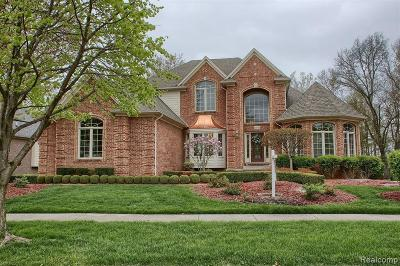 Shelby Twp Single Family Home For Sale: 13507 Maple Lawn Dr
