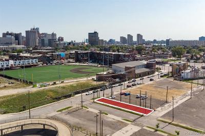 Detroit Residential Lots & Land For Sale: 2287 Cochrane