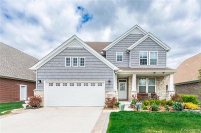 Westland Single Family Home For Sale: 37130 Chestnut Dr