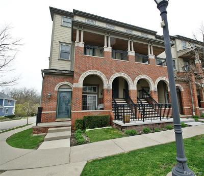 Auburn Hills Condo/Townhouse For Sale: 3863 Forester Blvd