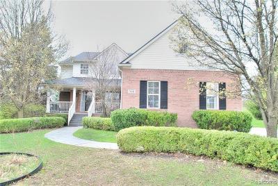 Rochester Hills Single Family Home For Sale: 726 Elmwood Crt