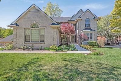Farmington Hills Single Family Home For Sale: 27267 Cambridge Ln
