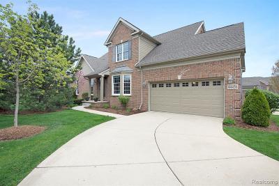 Northville Condo/Townhouse For Sale: 44456 Broadmoor Blvd