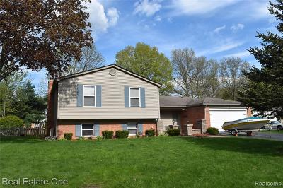 Lake Orion Single Family Home For Sale: 2998 Walmsley Circle Dr