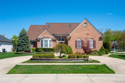Sterling Heights Single Family Home For Sale: 2197 Rolling Stone Dr