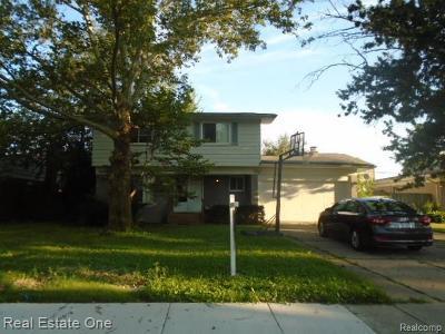 Southfield Single Family Home For Sale: 17121 Nadora St