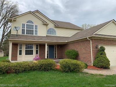 Troy Single Family Home For Sale: 1243 Hartland Dr