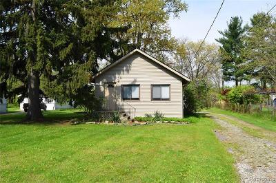 Southfield Single Family Home For Sale: 20975 Van Buren St