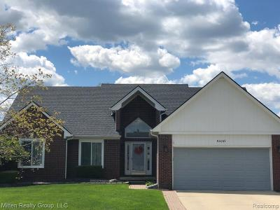 Macomb MI Single Family Home For Sale: $340,000