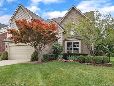 Northville Single Family Home For Sale: 16401 Mulberry Way