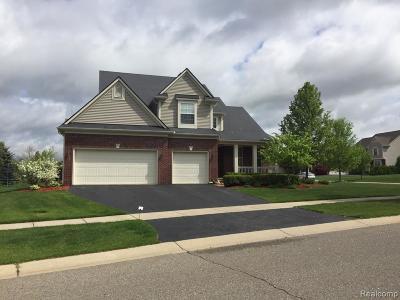 Oakland Single Family Home For Sale: 515 Franklin Lake Cir