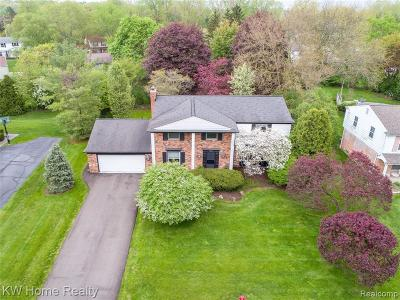 Bloomfield Hills Single Family Home For Sale: 7129 White Pine Dr