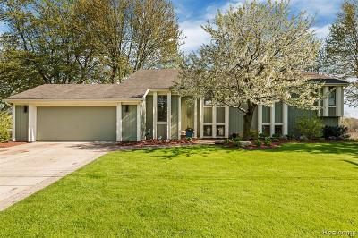 Lake Orion Single Family Home For Sale: 2815 Candlewick Dr