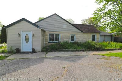 Farmington Hills Single Family Home For Sale: 20925 Randall St