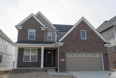 Northville Single Family Home For Sale: 48020 Fieldstone Dr
