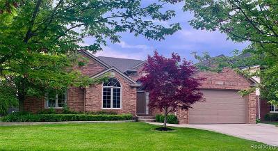 Macomb Single Family Home For Sale: 21297 John Dr