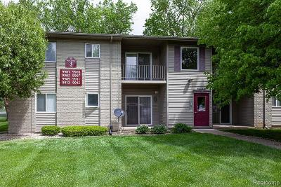 Allen Park Condo/Townhouse For Sale: 9911 Allen Pointe Dr