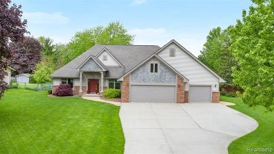 Lake Orion Single Family Home For Sale: 3830 Hi Crest Dr