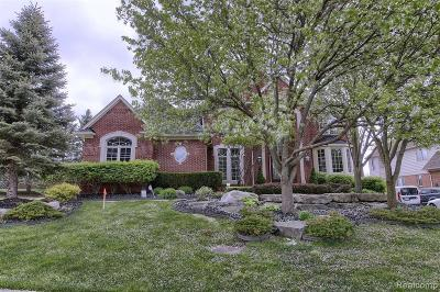 Rochester Hills Single Family Home For Sale: 1091 Clear Creek Dr