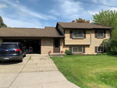 Rochester Hills Single Family Home For Sale: 775 Grace Ave