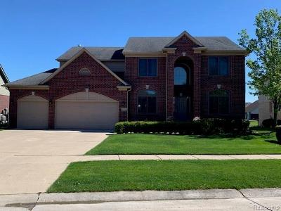 Macomb Single Family Home For Sale: 19782 Yvonne Dr