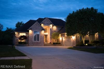 Macomb Single Family Home For Sale: 18970 Riverpark S